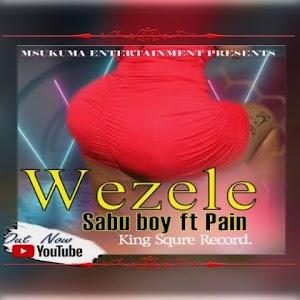 Download Audio | Sabu Boy ft Pain - Wezele