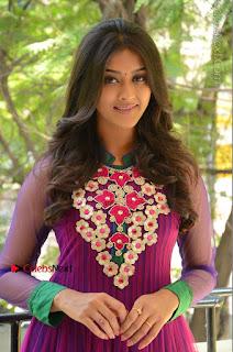 Actress Pooja Jhaveri Latest Stills in Purple Salwar Kameezt at Dwaraka Success Meet  0023.JPG