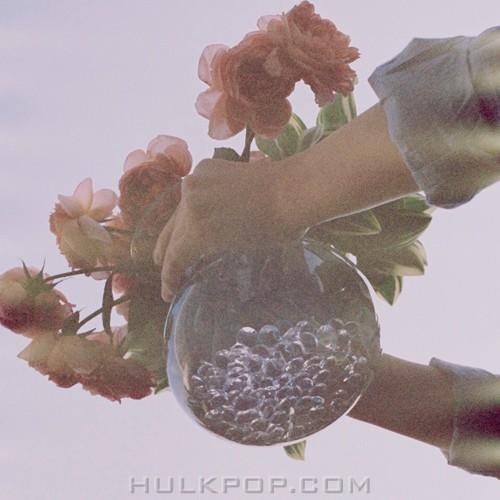 CONAN (ROCOBERRY) – 물병의 꽃 – Single