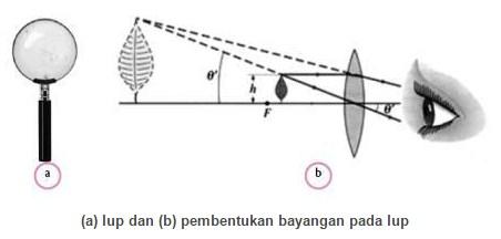 Alat Optik Lup