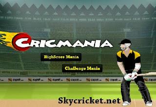 Play Cric mania game