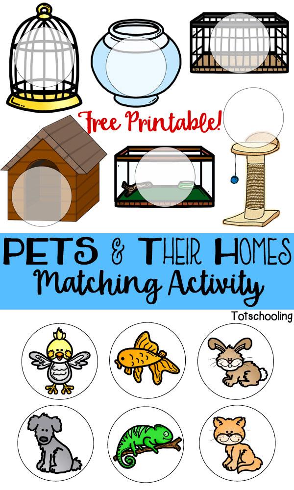 pets their homes matching activity totschooling toddler preschool kindergarten. Black Bedroom Furniture Sets. Home Design Ideas