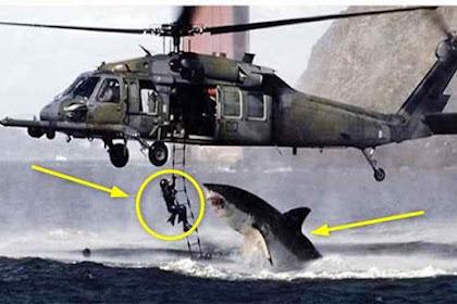Sempat Dipercaya! Ini 10 Gambar Hoax yang Gemparkan Dunia, Nomor 3 Paling Viral