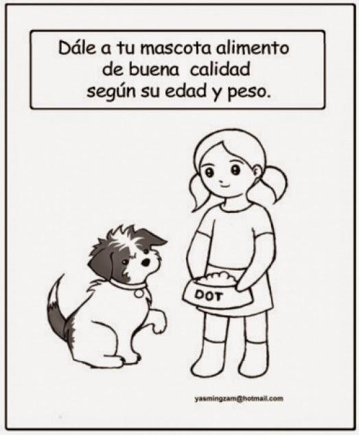 Cuidado de las Mascotas: CUIDADOS DE LOS ANIMALES