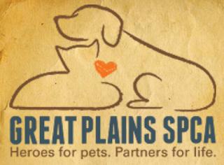 http://www.greatplainsspca.org/adopt/adoptable-cats/