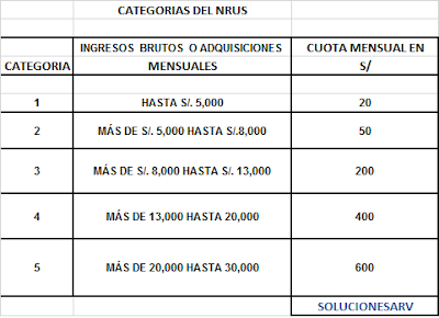 tabla de categorias nrus