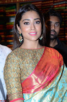 Shriya Saran Looks Stunning in Silk Saree at VRK Silk Showroom Launch Secundrabad ~  Exclusive 009.JPG