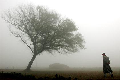 Conversa na neblina