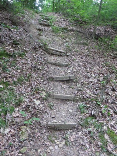 hilly trail with damaged steps