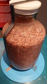 Costco Sized Jar Of Krill.