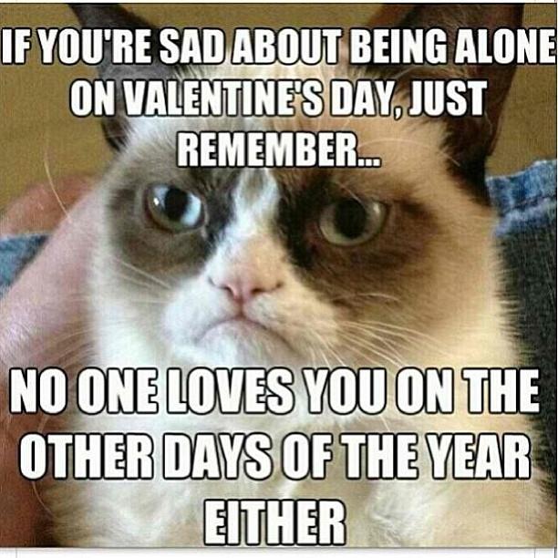 Sad Alone Memes: Grumpy Cat: Sad On Valentine's Day