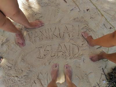 panikian island white sand pitogo zamboanga del sur turtle island pawikan