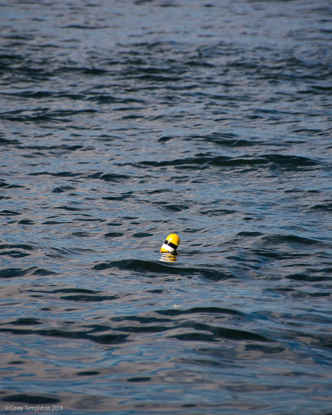 Portland, Maine USA May 2018 photo by Corey Templeton. A lone buoy, doing its thing in Casco Bay.