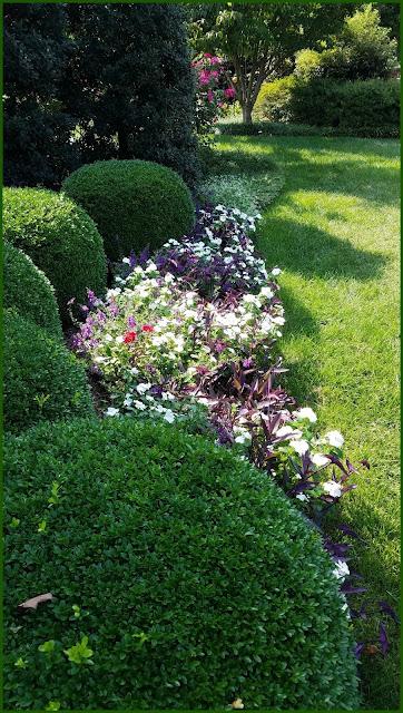 September Garden Ideas