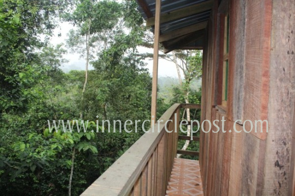 balcony of kakum tree house