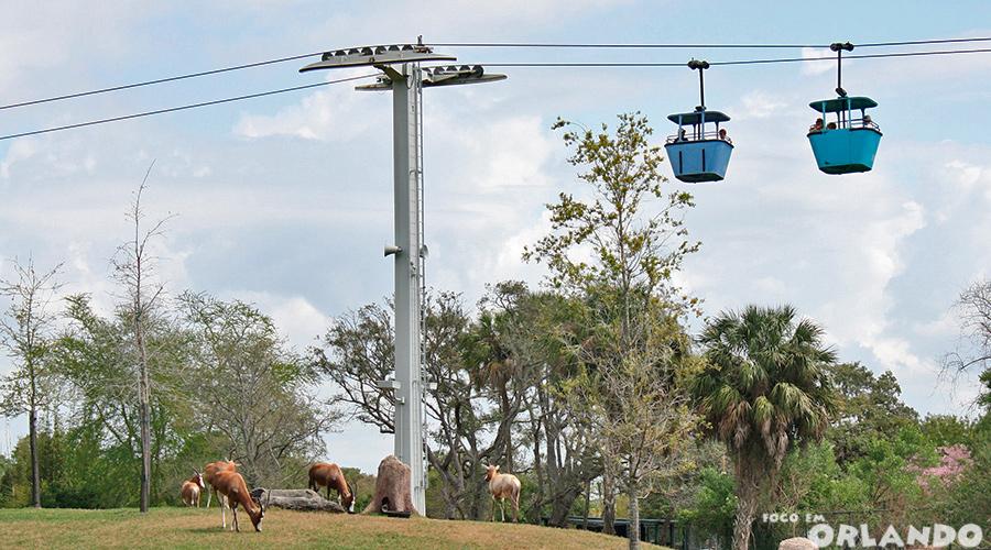 Skyride, Busch Gardens Tampa, Tampa Bay