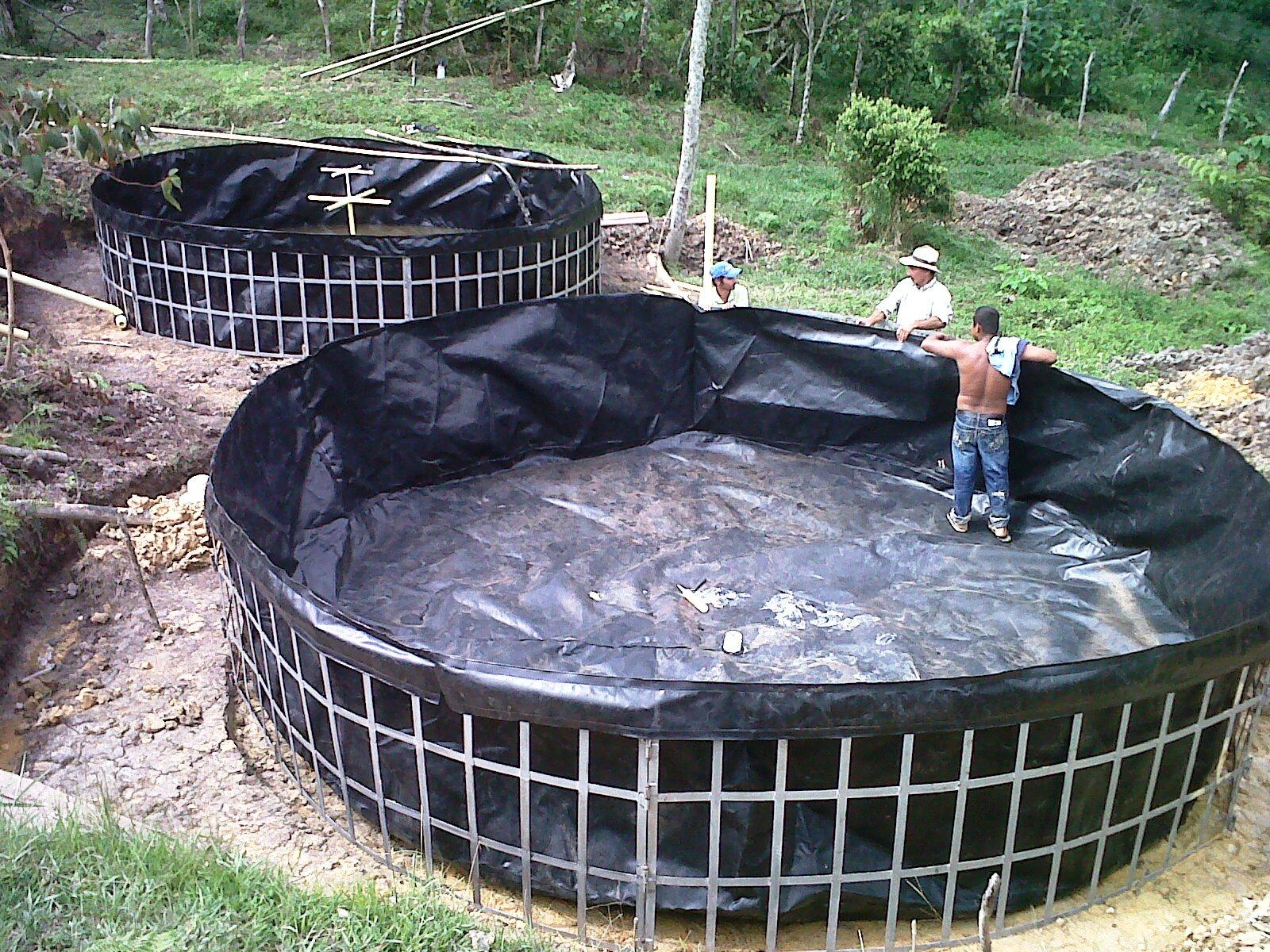 Jovenes rurales emprendedores instalaci n de tanques for Tanques circulares para acuicultura