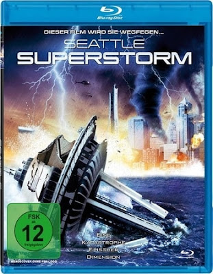 Seattle Superstorm 2012 Dual Audio BRRip 480p 300Mb x264