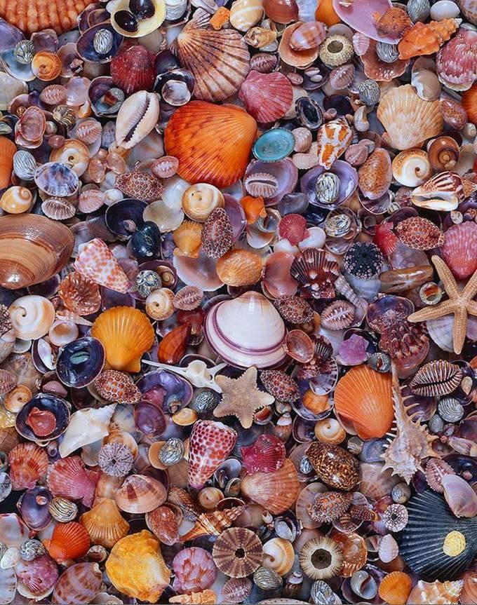 Belas Pedras e Rochas