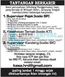 Bursa Kerja Lampung di PT. Karunia Alam Sentosa Abadi Terbaru Juli 2016
