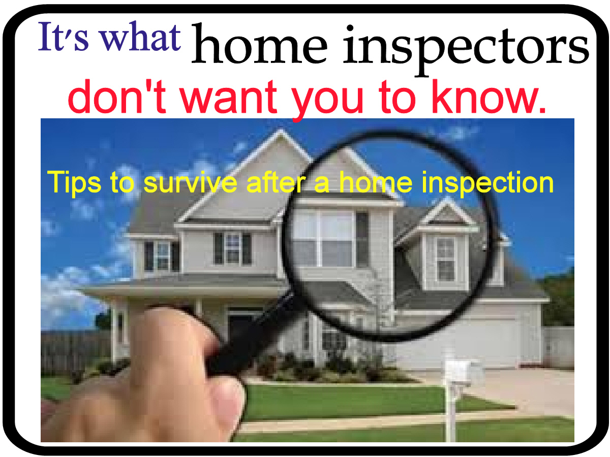 Mr fix it handyman service for Home inspection tips