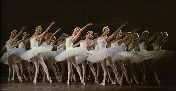 tumblr inspiration - swan lake ballet