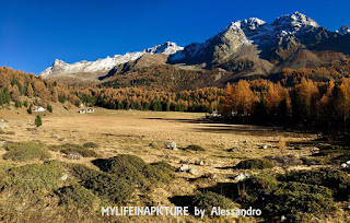 Mylifeinapicture,valle Engadina, photo