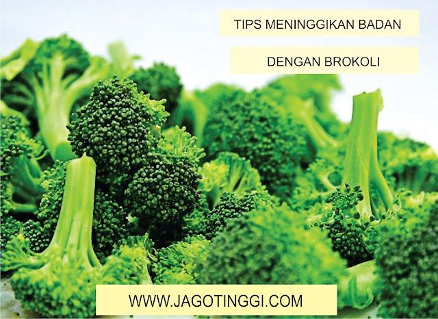 tips meninggikan badan dengan brokoli