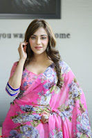 Actress Angela Krislinzki in Pink Saree Blouse Exclusive Pics March 2017 ~  106.JPG