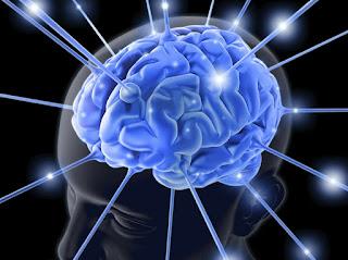 Suplemen Untuk Kecerdasan Otak Dan Obat Gangguan Jiwa