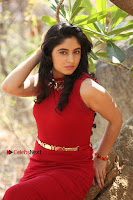 Telugu Actress Zahida Sam Latest Pos in Red Gown at RF Films New Movie Opening  0357.JPG