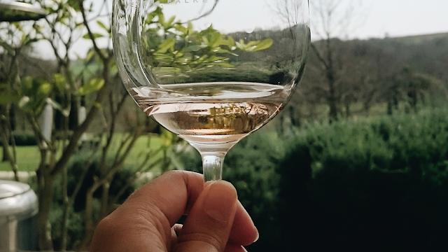 peter falke wine tasting