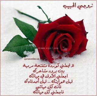 صور عشق وحب , صور حب مكتوب عليها كلمات رومانسية