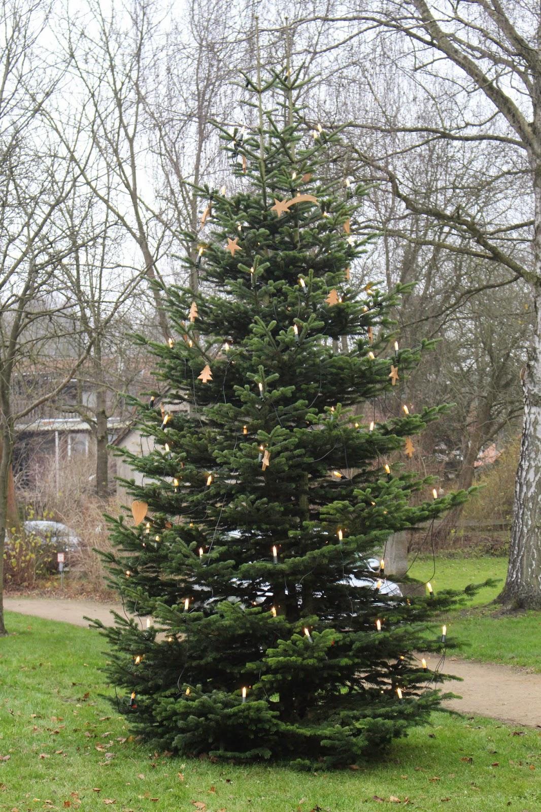 heideort steinhorst niedersachsen der tannenbaum ist fertig geschm ckt der advent kann kommen. Black Bedroom Furniture Sets. Home Design Ideas