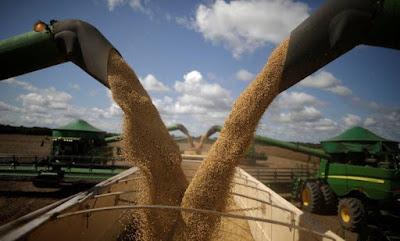 Associação de exportadores de grãos avaliam parar por alta no frete