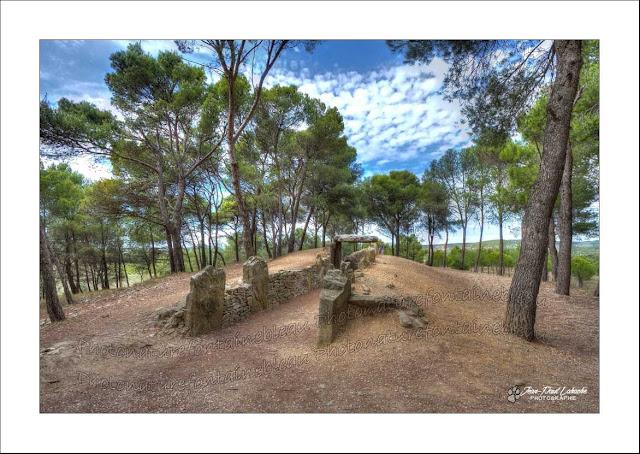 un dolmen à couloir sur un tumulus sous les pins et le ciel bleu
