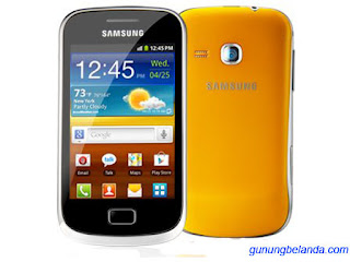 Cara Flashing Samsung Galaxy Mini 2 GT-S6500