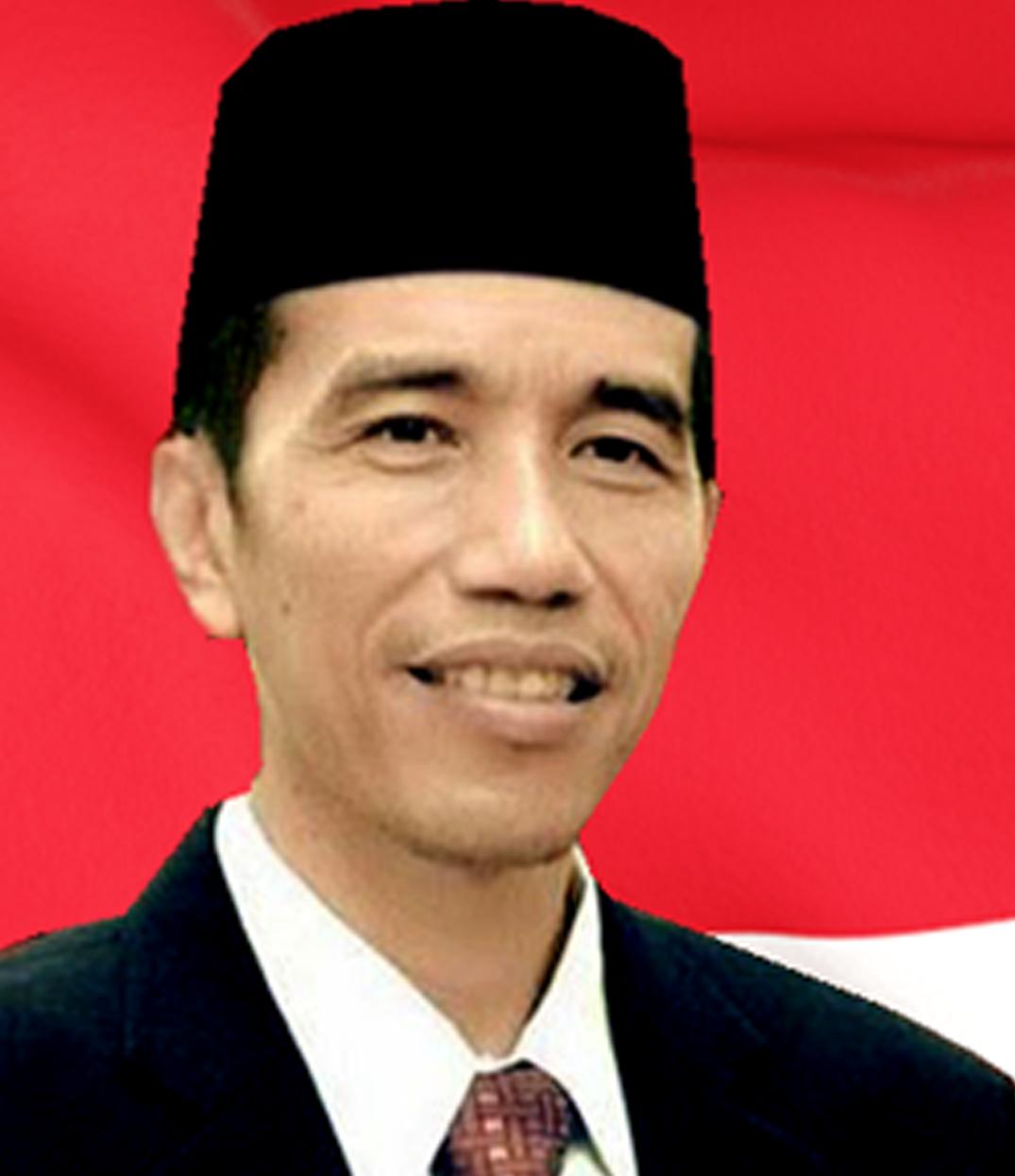 Presiden Ir. Joko Widodo berwarna