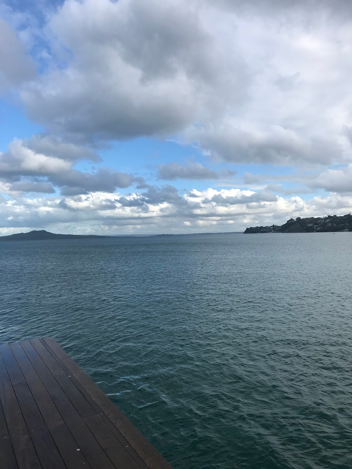 Murrays Bay Wharf