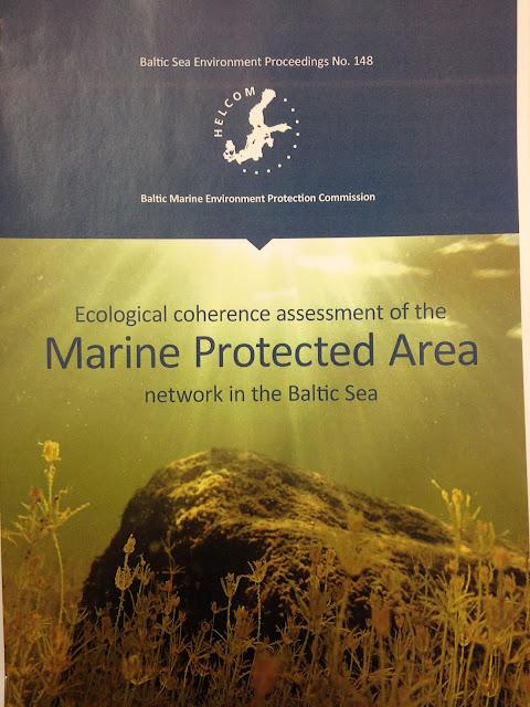 """Kuva HELCOM-raportin """"Marine Protected Area"""" kannesta, jossa on kaunis kuva veden alta"""