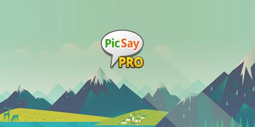 Download Picsay Pro 1.8.0.5