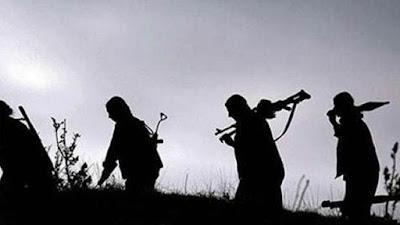Террористическая организация PYD/PKK при поддержке США готовится к созданию армии в Сирии