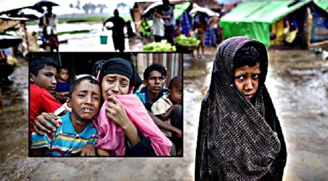 Derita Etnik Rohingya Dianiaya, Dizalimi.. Pendedahan Dari Mangsa