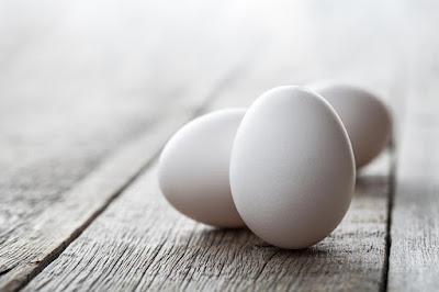 white-egg-layer.jpg