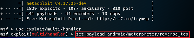 set up the reverse tcp payload