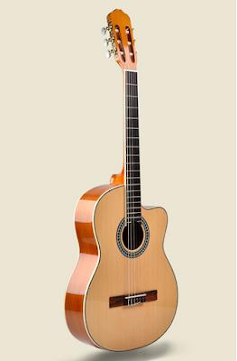 Đàn guitar classic Vines VA320N