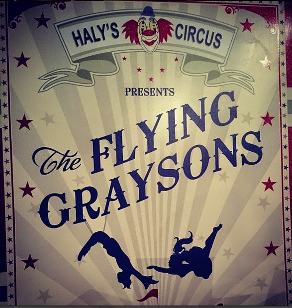 the flying graysons gotham
