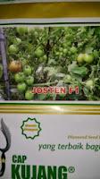 Benih,Josten, tomat, tahan virus,kuning, keriting, unggul, dataran rendah, tinggi, petani, Cap Kujang, Diamond Seed