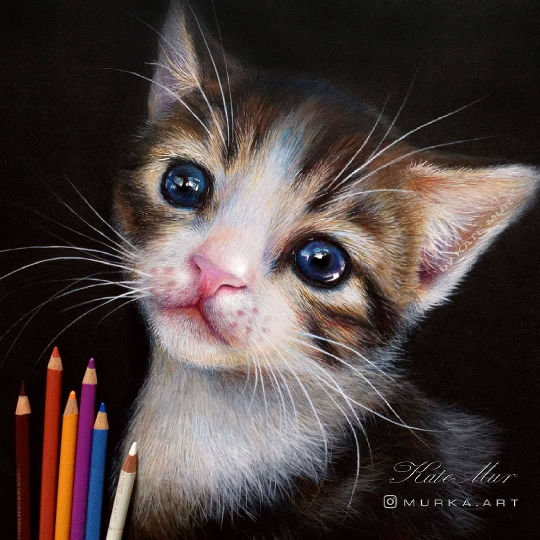 02-Blue-Eyed-Kitten-Kate-Mur-Animal-Art-with-Pencil-Ballpoint-Pen-and-Paint-www-designstack-co