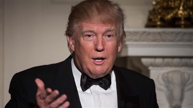 US President Donald Trump says Oscars 'focused so hard on politics'